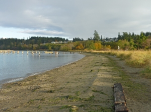Beach at Anacortes ferry landing, Washington