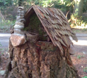 Back of the Fairy House