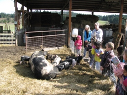 Orcas Island School children enjoy a day on the farm learning about all the animals and what it means to be a farmer