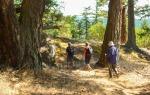 Turtleback Mountain hike - Morning Ridge trail