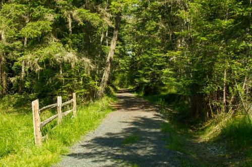 Road on Crane