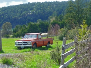 orange-ford