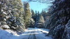Buck Mountain HOA ensures roads are kept clear.