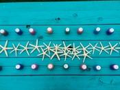 Paint sea stars!