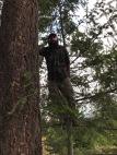 He's a tree guy :)