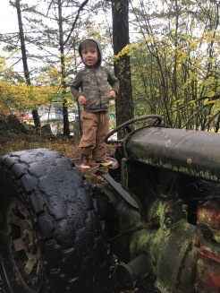 This kid loves the old tractors!!